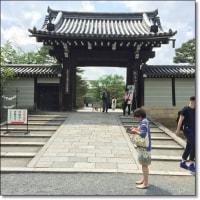仁和寺で「御室流いけばな展」を見てきました~