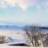 厳寒・木々の合間からの雪景色