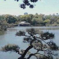 八丁堀京橋支部野外法座