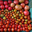 【収穫】とまと、おくら【管理】オクラ、さつまいも、枝豆、トマト、にんじん