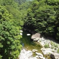 面河渓関門の様子(5月31日)