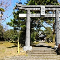 臥龍梅咲く松尾神社 in 熊本・八代市