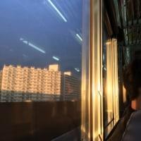 明日へ続く電車