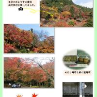 談山神社(奈良県)の紅葉