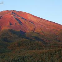秋の赤富士