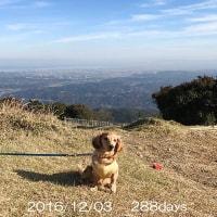 今日の「ニコ」は、香良洲海岸~青山高原へ!