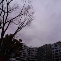 今日の私は820 【2月23日の博多の朝です】