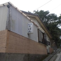 竹島3日目 ――― 午前中に島の東へ歩いて来ました。竹藪と牛とヤツガシラ