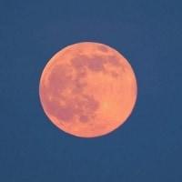 ピンクの月の夜^^