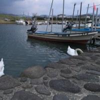 旧漁港に寄り道