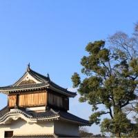 岡山城で城パフェ