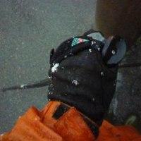雪中ウォーキング