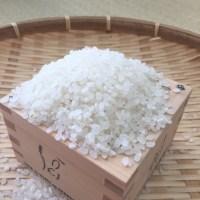 マイ箸を作るワークショップ開催します◡̈