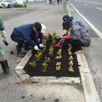 町内会で国道や公園に花植え