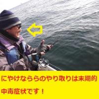4日のナナマル・ダルク便!
