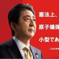 安部総理は大高弥三郎では無いのかと思うのですが