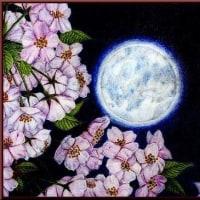 色鉛筆画336 (夜桜)