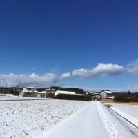 現世考: 阪神大震災と東日本大震災の間