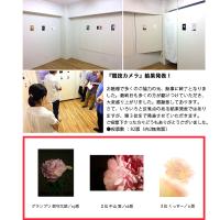 競技カメラ /最終日!/17時〜結果発表!