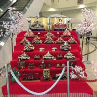 函館空港も雛飾りが