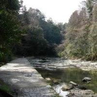 自然が残る養老渓谷