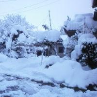 暖冬小雪一転大雪です。