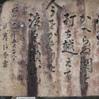大竹を探訪する。
