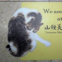 山種美術館で、 『日本画の教科書 京都編』 を見ました。