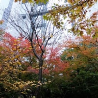 梅田スカイビル 界隈を散歩