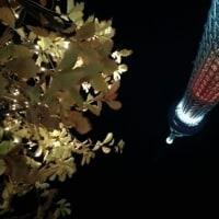 東京スカイツリー、プロジェクションマッピング