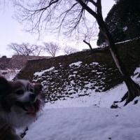 雪まみれ 続き