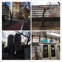 霞ヶ関の外務省に行ってきました。今東京駅です。これから家に帰ります。