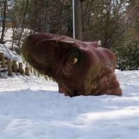 恐竜発掘現場と化石類が「国の天然記念物」に指定。