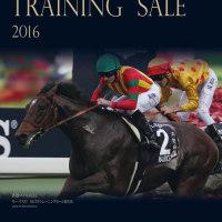 ��HBA�ȥ졼�˥�����2016(HBA Training Sale��2��)�ۤ�����!(��̳��פȺǹ���ϾҲ�)
