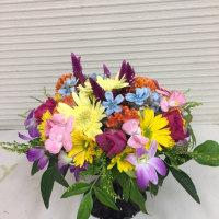 カラフルなお花でラウンドスタイル。
