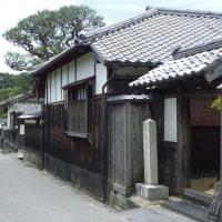滞在型家庭菜園:江戸屋横丁