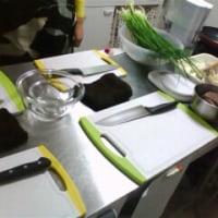 5月の料理教室