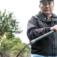 50th うなぎの寝床  長良川はうなぎの川でもあった。その独特の漁具とは