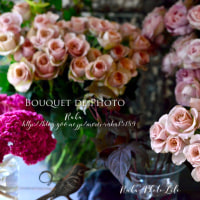 Bouquet de Photo 9月 秋バラ