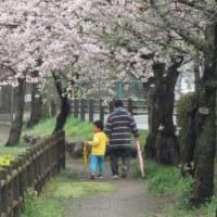 春の空 by 空倶楽部