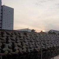田尻の釣り堀
