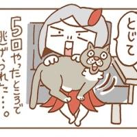 ネコササイズ
