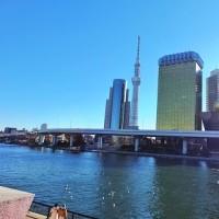 2016 1月1日~3月29日 東京写真散歩
