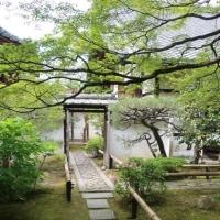 京都さんぽ。16 ~壁の街~