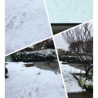 雪のためレッスン中止11・24