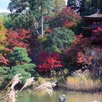 池と紅葉と三重塔