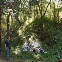 2017年5月21日 滝山城跡下草刈り どれだけやれば終わるの?「小宮曲輪入口付近・加住市民センター裏の竹林」