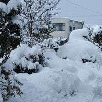 すっかり雪国に変貌し、じわじわと身に沁みてくる・・・富山市水橋