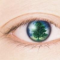 失明の危機から目を守ろう