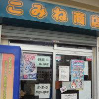 2016年8月 子連れ座間味ダイビング旅行記 その5…座間味の2日目,スタート
